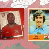 Ashley Williams and Dai Davies